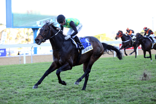 Captain of All wins Gr1 Mercury Sprint in flying form