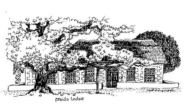 Druids Lodge by artist Carol Mangigalli