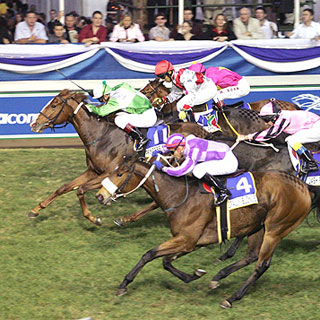 Princess Sassi winning Gr 2 Golden Slipper
