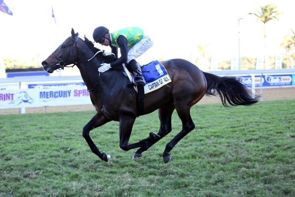 Captain of All wins Gr1 Mercury Sprint